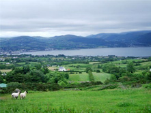 ireland travel to Carlingford Lough Mourne mountains Ireland